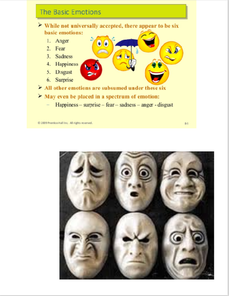 ekmans six basic emotions list amp definitions video - HD944×1220